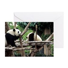 Panda mother with cub Greeting Card