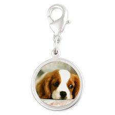 Cute Dog Silver Round Charm