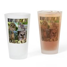 2014 OwlWatch Montage Drinking Glass