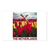 Netherlands Tulips Postcards (Package of 8)