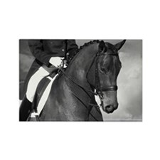 Partnership. Dressage Horse. Rectangle Magnet (10