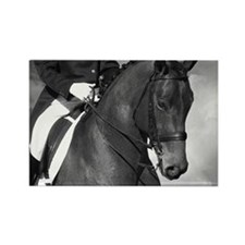 Partnership. Dressage Horse. Rectangle Magnet