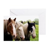 Three Horses Greeting Cards (Pk of 10)