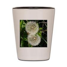 Dandelion Flower Shot Glass