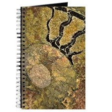 Ammonite Fossil Journal