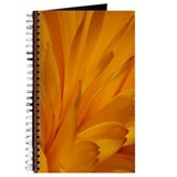 Marigold Journal