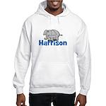 Elephant - Harrison Hooded Sweatshirt