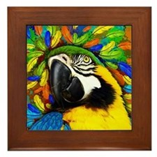 Gold and Blue Macaw Parrot Fantasy Framed Tile