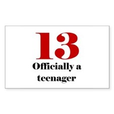 13 Teenager Rectangle Decal