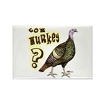 Got Turkey? Rectangle Magnet (100 pack)