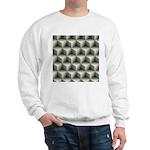Ambient Cubes Sweatshirt
