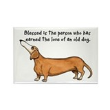 Old Dachshunds Rectangle Magnet
