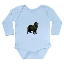Newfoundland (black st Baby Suit
