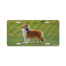 Sheltie at Attention Aluminum License Plate