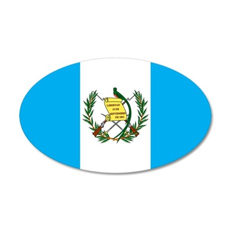 guatemalan Flag gifts Wall Decal