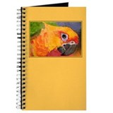 Sun Conure Parrot Journal