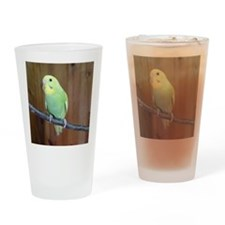 Budgie Drinking Glass