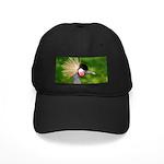 Grey Crowned Crane Baseball Hat