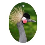 Grey Crowned Crane Ornament (Oval)