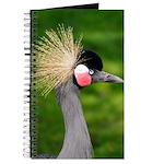 Grey Crowned Crane Journal