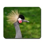 Grey Crowned Crane Mousepad