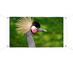 Grey Crowned Crane Banner