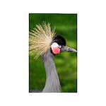 Grey Crowned Crane 3'x5' Area Rug