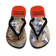 Safaris Flip Flops