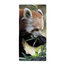 Red Panda 002 Beach Towel