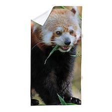 Red Panda 005 Beach Towel