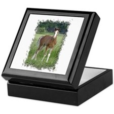 Cute Rein Keepsake Box