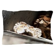 Baby Quail Pillow Case