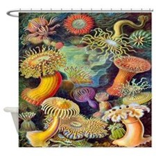 Vintage Colorful Sea Anemones Shower Curtain