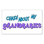 Crazy about my Grandbabies! Rectangle Sticker