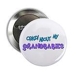 Crazy about my Grandbabies! Button