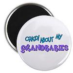 Crazy about my Grandbabies! Magnet