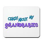 Crazy about my Grandbabies! Mousepad