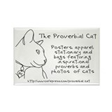 Proverbial Cat Rectangle Magnet (10 pack)
