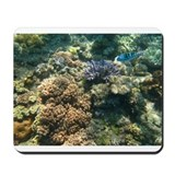 Fish Photo Mousepad