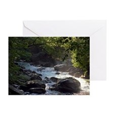 Smoky Mountain Stream Greeting Cards (Pack of 6)