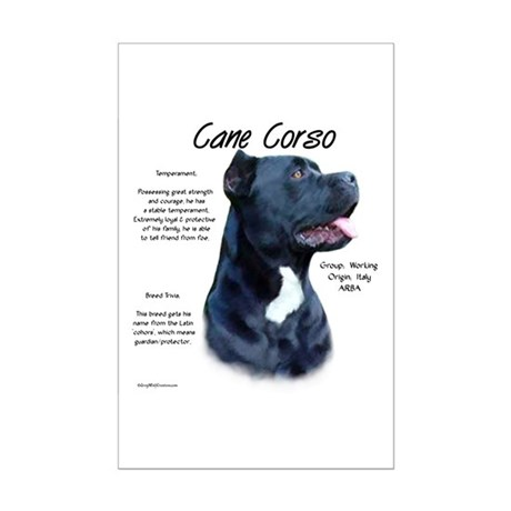 Cane Corso Mini Poster Print