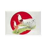Japanese Yokohamas Rectangle Magnet (100 pack)