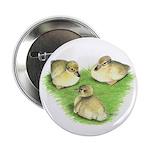 Snowy Mallard Ducklings Button