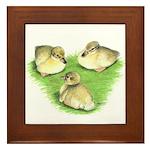 Snowy Mallard Ducklings Framed Tile