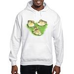 Snowy Mallard Ducklings Hooded Sweatshirt