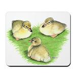 Snowy Mallard Ducklings Mousepad