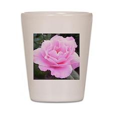 Pink Rose Shot Glass