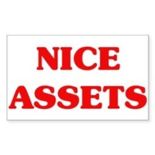 Nice Assets Rectangle Decal