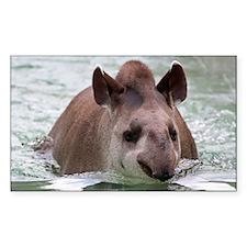 Tapir 002 Decal