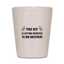 Promoted To Big Brother Shot Glass